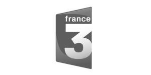france31-300x149